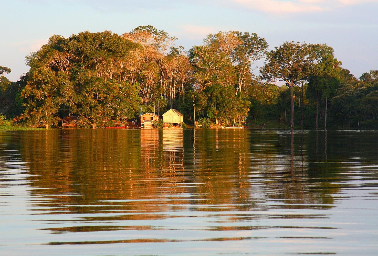 Amazônia - Amazon rainforest. Source: Unsplash